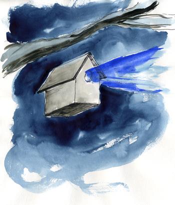Steel Birdhome
